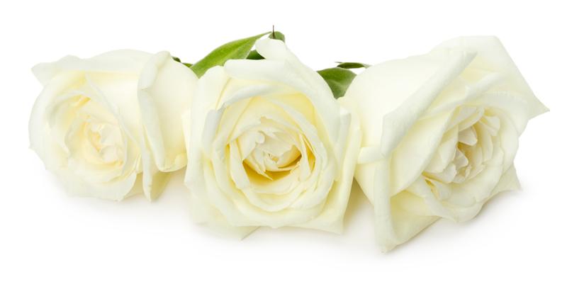 Funeral com cremação